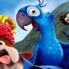 【どうぶつの話題】ナニコレ!口の中がめっちゃ気持ち悪い鳥が発見される!