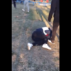 伊藤雷登の暴力動画 無抵抗の少年を殴る蹴るで炎上 青井高校の男子生徒 | ニュース速